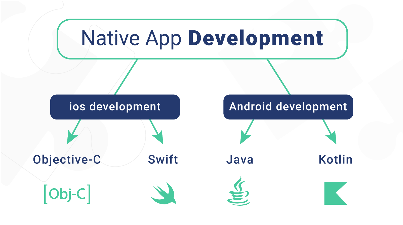 Native app development for iOS & Android devices
