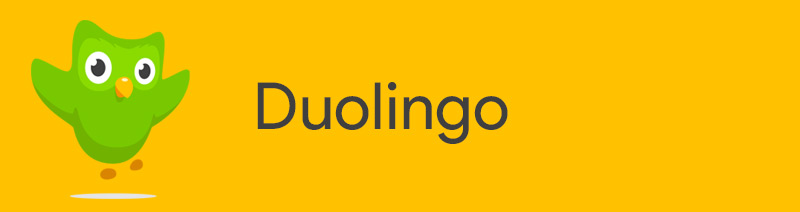 Duolingo language learning application